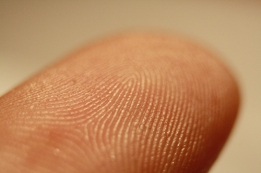 Fingerprint_detail_on_male_finger_small
